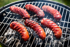 Saucisses d'un rouge ardent avec les épices et le romarin sur un gril Photos libres de droits