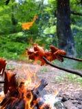 Saucisses de rôti au-dessus d'un feu Images libres de droits