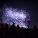 Saudação festiva dos fogos-de-artifício na noite de ano novo O 1º de janeiro de 2016 em Amsterdão - Netherland Imagens de Stock Royalty Free