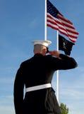 Saudação marinha Fotos de Stock Royalty Free