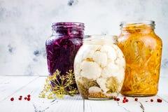 Sauerkraut ποικιλία που συντηρεί τα βάζα Ο σπιτικός γερμαναράς παντζαριών κόκκινων λάχανων, turmeric κίτρινος γερμαναράς, μαρινάρ στοκ φωτογραφίες