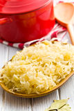 Sauerkraut in ceramic bowl Royalty Free Stock Photography