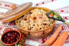 Sauerkraut with cranberry berry. Still life.  Stock Image