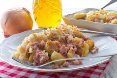 Sauerkraut dumplings Royalty Free Stock Image