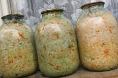 Sauerkraut with fennel seeds. Selective focus Stock Photography