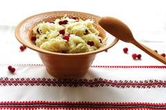 Sauerkraut med cranberries arkivbild