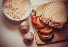 Sauerkraut recipe Stock Photography