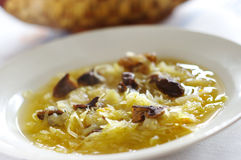 Sauerkraut soup. Traditional sauerkraut soup with mushrooms Royalty Free Stock Photo