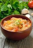 Sauerkraut soup stock photography