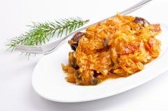 Sauerkraut w Polskim rodzaju z uwędzonym mięsem obraz royalty free