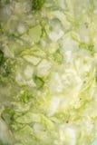 Sauerkraut zbliżenie Fotografia Stock