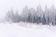 Sauerland in winter Royalty Free Stock Photo
