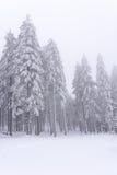 Sauerland in winter Royalty Free Stock Photos