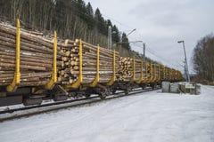 Transporte de la madera a los saugbrugs Imagenes de archivo