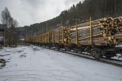 Transport de bois de construction aux saugbrugs Photo libre de droits