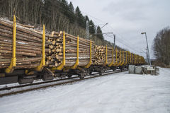 Timber transport to saugbrugs. Saugbrugs is a large paper mill in Halden, Norway and need lots timber to produce paper. The image of the train and wagons are Stock Images