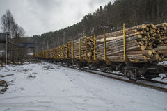 Timber transport to saugbrugs. Saugbrugs is a large paper mill in Halden, Norway and need lots timber to produce paper. The image of the train and wagons are Royalty Free Stock Photo