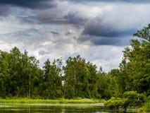 Saukas jezioro Obraz Royalty Free