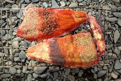 Saukeye鲑鱼排用香料和草本 免版税库存图片
