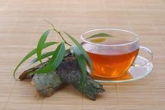 Saule de thé photographie stock libre de droits