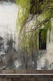 Saule et vieux mur à Suzhou photographie stock