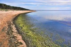 Saulkrasti Östersjön, Lettland Royaltyfria Foton