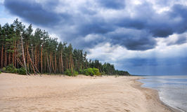 Saulkrasti, Baltic Sea, Latvia. Sand beach in Latvia with dramatic clouds and pine-tree forrest. Saulkrasti, which is about 50 km from Riga - capital of Latvia stock image