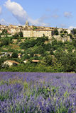 Sault. View of the medieval town Sault, Luberon, southern France Royalty Free Stock Images