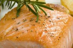 Saumons photos libres de droits