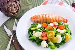 Saumons avec de la salade végétale Image libre de droits