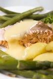 Saumons cuits Images libres de droits