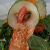 Saumons d'Alaska sauvages image libre de droits