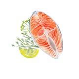 Saumons d'aquarelle de vecteur Images libres de droits