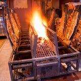 Saumons de flamme Images libres de droits