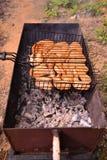saumons sur des charbons Images stock