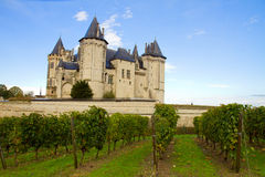 Saumur castle and vineyards Royalty Free Stock Photography