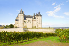 Saumur castle and vineyards. In the Loire Valley, France Royalty Free Stock Photography