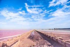 Saumure et sel d'un lac rose, colorés par la saline de Dunaliella de micro-algues, célèbre pour ses propriétés antioxydantes, enr image stock