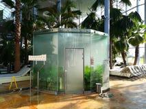 Sauna - steam bath rainforest Stock Image