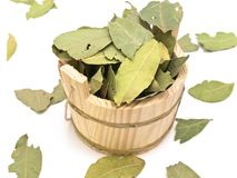 Sauna vat and bay leaves. Wooden sauna vat and some bay leaves against white background stock photography