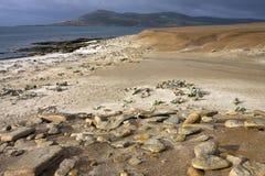Saunders-Insel - die Falklandinseln Stockbilder