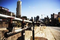 Saunters Австралии Стоковое Изображение