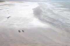 Saunton beach, North Devon Stock Photography