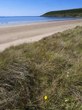 Saunton sands Royalty Free Stock Photos