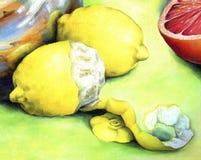 Saure Zitrone gemalt im Öl auf Segeltuch Stockbilder