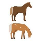 Sauri nelle pose differenti illustrazione di stock