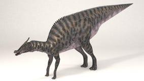 Saurolophus恐龙 库存照片