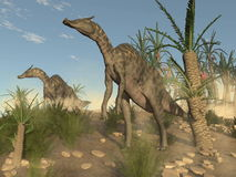 Saurolophus dinosaurs - 3D render Royalty Free Stock Photos