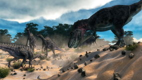 Saurolophus hunting tarbosaurus dinosaur - 3D Royalty Free Stock Images