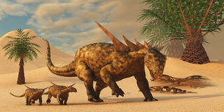 Sauropelta Dinosaur in Desert. A Sauropelta mother leads her offspring in a desert area of North America in the Cretaceous Period Royalty Free Stock Photography